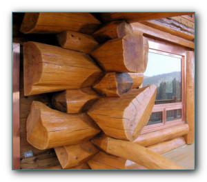 Обработка древесины от гниения народными средствами