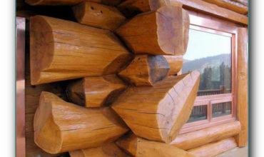 obrabotka-drevesini-ot-gnieniya