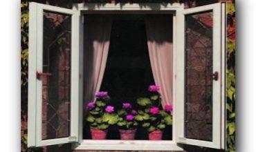 kakie-okna-vibrat