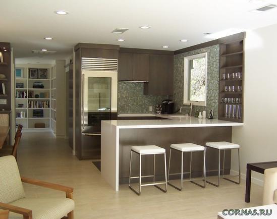 Современная планировка и дизайн кухни - студии. Красивые фото