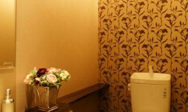 oboi-dlya-tualeta